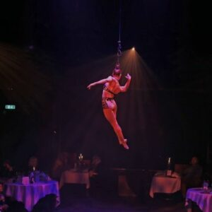 Danila Bim: Interview With An LA Based Circus Artist